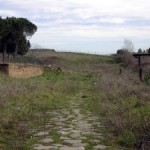 La Tomba monumentale ritrovata in Località S. Sidero e i suoi insoluti misteri (di Giulia De Sensi)