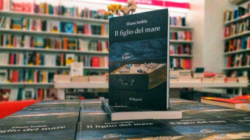 """In libreria """"Il figlio del mare"""", nuovo romanzo di Eliana Iorfida, Pellegrini Editore"""